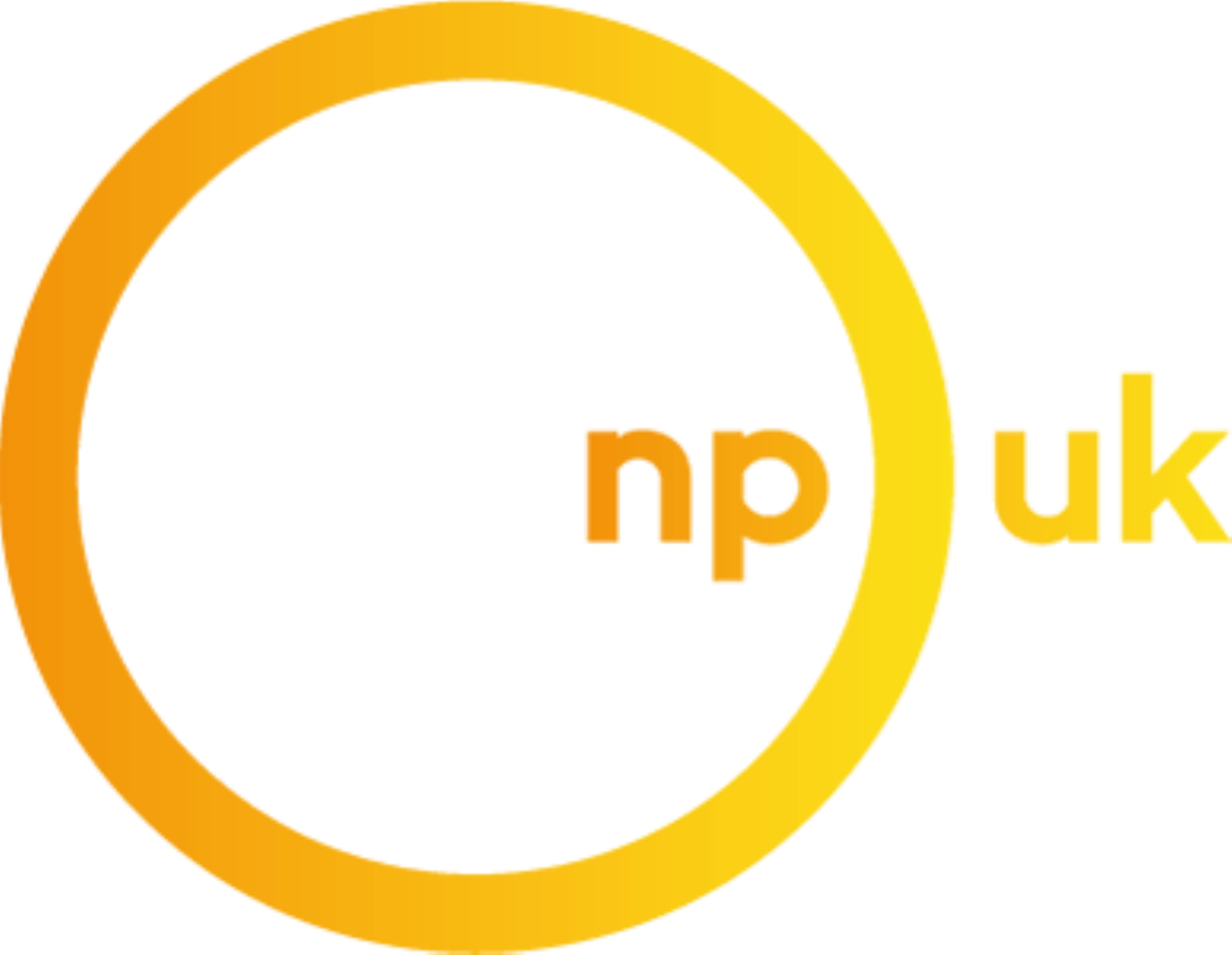 Npuk Logo Color (Custom)